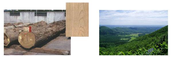 木材と新得町景色