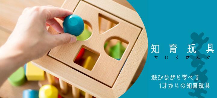 1歳からの知育玩具